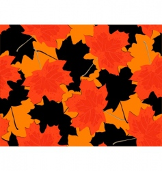 leaf fall vector image vector image