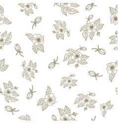 hand drawing peony flowers seamless pattern vector image vector image