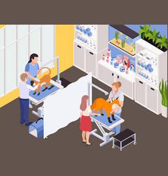 Exotic pets vet treatment vector
