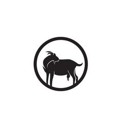 goat black animals logo and symbol vector image