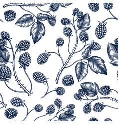 hand drawn blackberries backdrop in engraved vector image