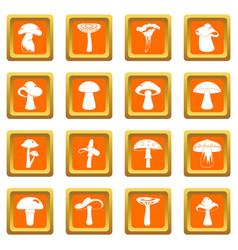 Mushroom icons set orange vector