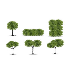 Realistic tree on white background eps10 vector