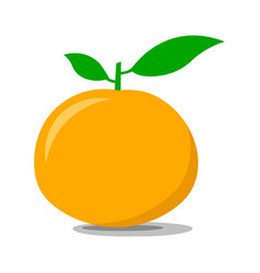 Ripe tangerine on a white background vector