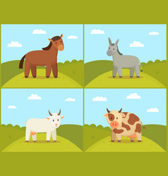 set of domestic animals color vector image