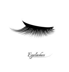Eyelash extension beautiful black long eyelashes vector