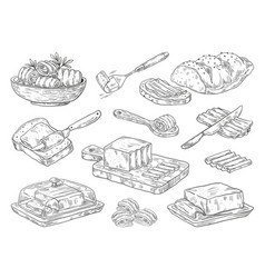 Hand drawn butter sketch breakfast culinary vector