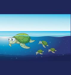 sea turtles swimming in the ocean vector image