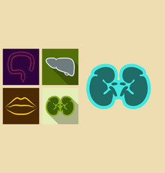 Set of icons in flat design on medecine theme vector