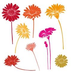Hand drawn gerber flower set vector image vector image