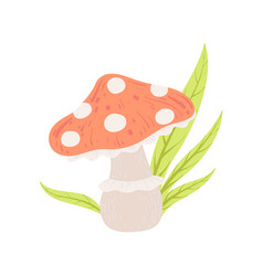 amanita muscaria forest mushroom fly agaric vector image