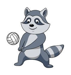 Cartoon raccoon with volleyball ball vector image
