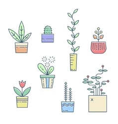 Line house plants icons vector