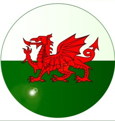 National Flag of Wales Button vector