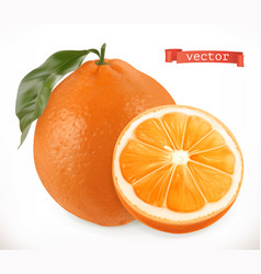 Orange fresh fruit 3d realistic icon vector