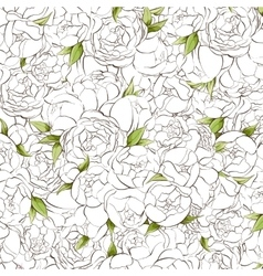 White peonies background vector