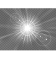 Abstract light rays vector image vector image