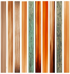 Colorful Texture of Wood vector image vector image