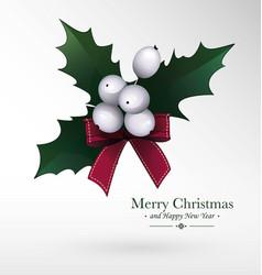 christmas berry mistletoe decorative traditional vector image