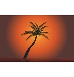 Palm in the sunset EPS 10 vector image vector image