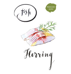 two pieces of herring with dill vector image