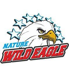 Wild Eagle vector image vector image