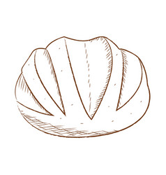 abstract bakery food vector image