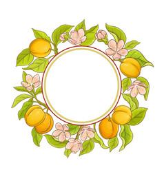 Apricot frame vector