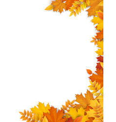 autumn leaves frame empty blank for card design vector image