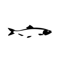 black silhouette herring baltic fish for design vector image