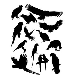 condor and parrot birds animal detail silhouettes vector image