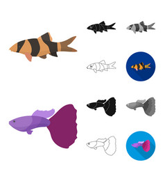 Different types of fish cartoonblackflat vector
