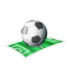 football ball field sport cartoon isolated icon vector image