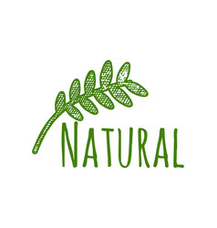 natural healthy emblem logo designs inspiration vector image