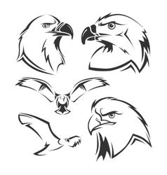 Eagle hawk mascots set vector image vector image