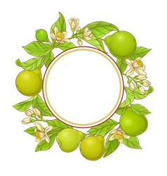 bergamot frame vector image