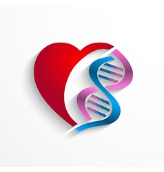 Dna conceptheart with double helix symbols vector