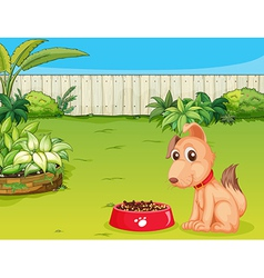 Dog with food vector image