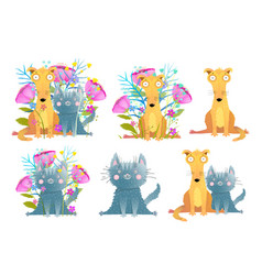 funny pets cat and dog collection with flowers and vector image