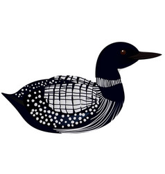 loon bird vector image