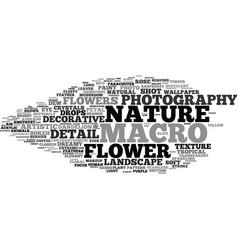macro word cloud concept vector image