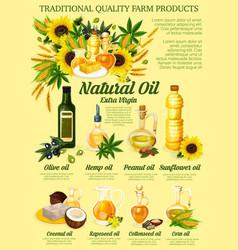 Organic vegetable hemp or nut oil vector