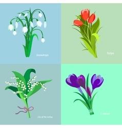 Set spring flowers Flet design vector image