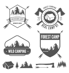 Set vintage mountains or forest camp badges and vector