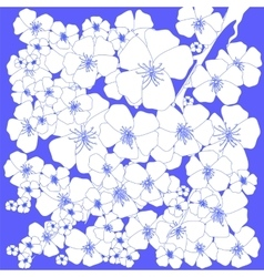 Spring White Flowers vector image