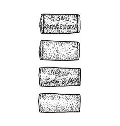 wine cork drawing engraving ink l vector image vector image