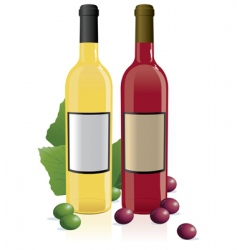 red amp white wine bottles vector image