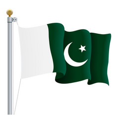 waving pakistan flag isolated on a white vector image vector image