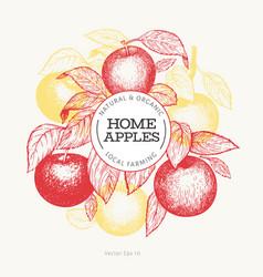apple branche design template hand drawn garden vector image