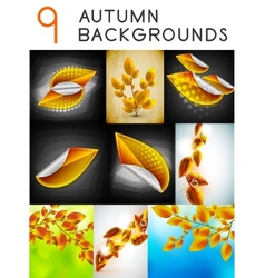 autumn design templates set vector image